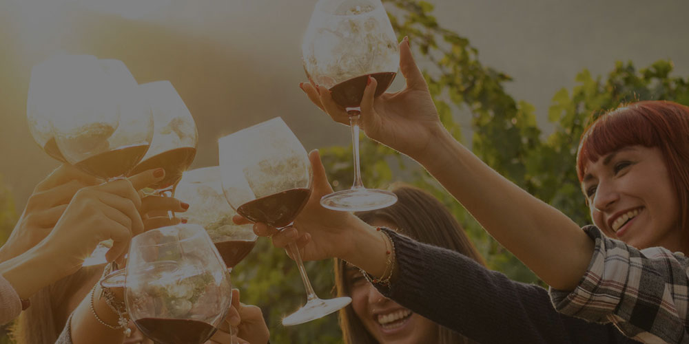 Guía del Vino Italiano en México